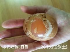 2015-07-25(土)りんご酢3日目*