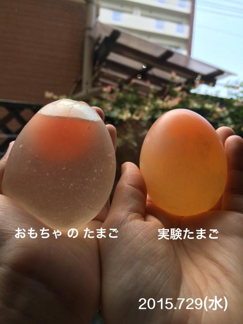 2015-07-29(水)