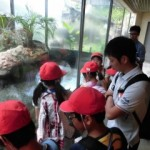 5年 天王寺動物園