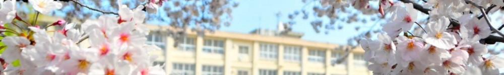 和歌山市立 新南小学校 ❀❀❀❀❀❀❀ Shinnan Elementary School