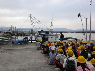 5年生 和歌浦漁港見学