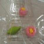 和菓子作り (46)